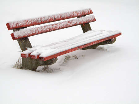 Bench covered in snow photo