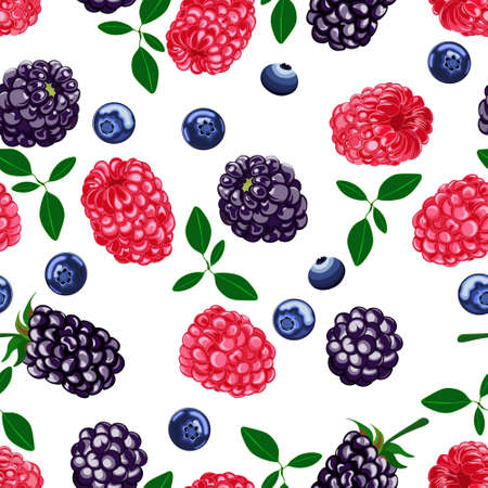 Very berry, blackberry, raspberries, blueberry, white background. Seamless pattern, vector. Vector Illustratie