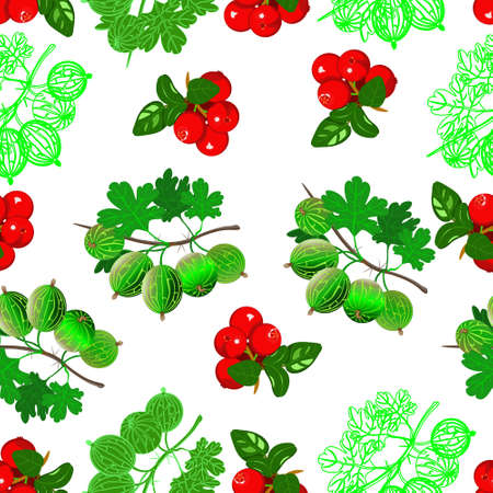 Very berry, cranberry and gooseberry on white background. Seamless pattern, vector.