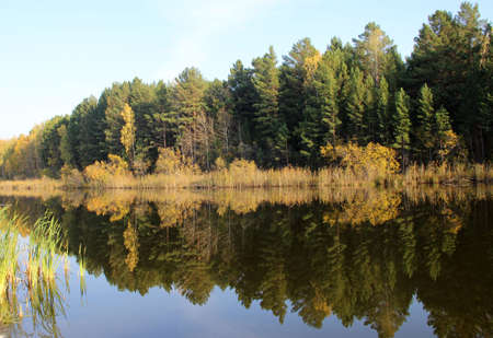 In the still surface of the water of the amazing lake, trees and the sky are reflected as in a mirror. Banco de Imagens