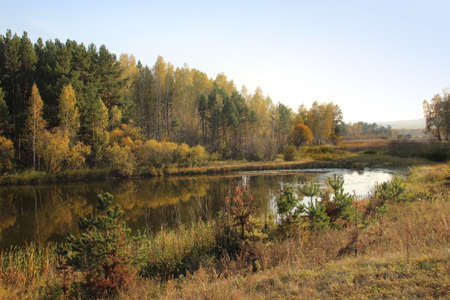 Autumn came and painted trees and bushes around the wild lake with different colors.