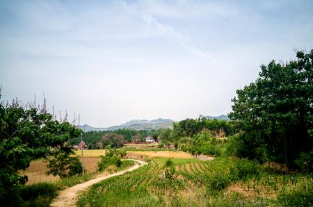 rural scenery 版權商用圖片