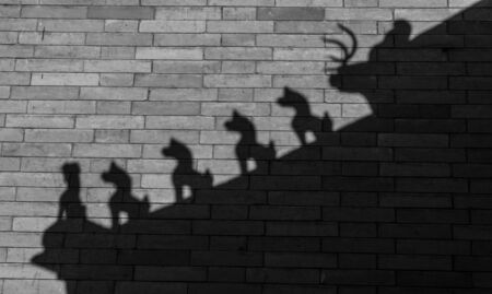 Ancient architecture eaves sculpture shadow  reflection on wall