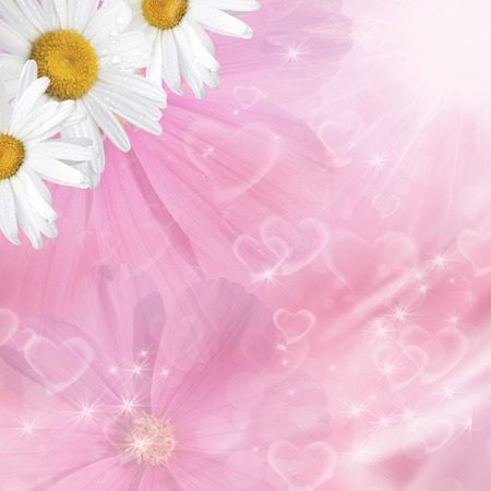 Floral pink background with bokeh hearts and camomile photo