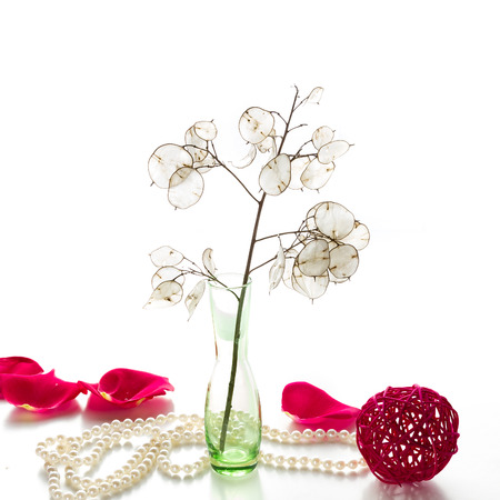 moon flower: Moon flower in a green vase and a pearl necklace on a white background. Space for text.