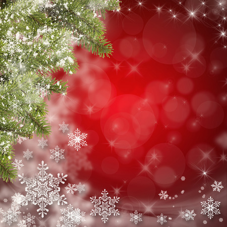 White snowflakes and Christmas tree branches on a Christmas background. Space for text. Stok Fotoğraf
