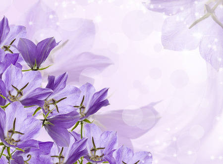 bell flower: lilac bells on a festive background with stars.