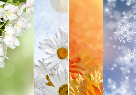 Four bright seasons - spring, summer, autumn, winter. Stok Fotoğraf