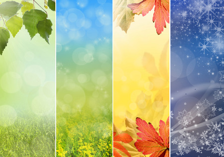 Four bright seasons - spring, summer, autumn, winter. 写真素材
