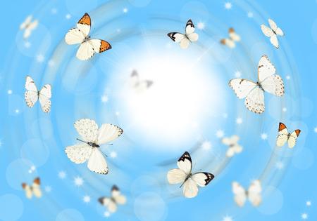 mariposas volando: Muchas mariposas volando sobre un prado verde. Fondo de verano. Editorial