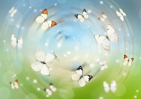 mariposas volando: Muchas mariposas volando sobre un prado verde. Fondo de verano. Foto de archivo