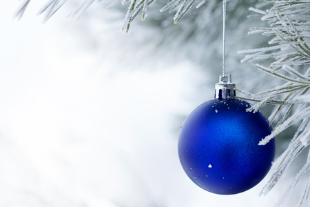christmas tree ball: Blue Christmas balls on a pine branch covered with frost. Christmas card. Space for text.