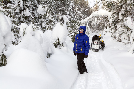 admires: Woman admires the snow-capped fir trees in the winter forest.