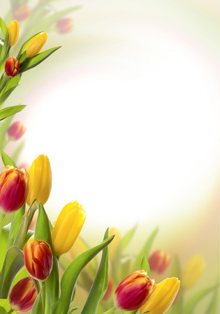 Spring background with red tulips. Space for text. Stockfoto