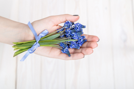 A bouquet of blue hyacinths with a ribbon in hand on a light background.
