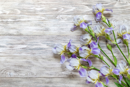 Bouquet of irises on a wooden background. Copy space for the text.