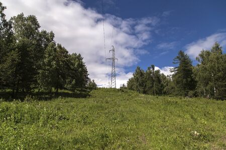 High voltage power line on a clearing in a green forest. Stock Photo