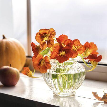 Autumn bouquet of nasturtiums on the windowsill.