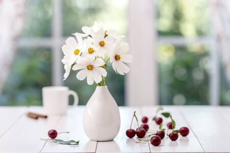 Bouquet of cosmeas in a vase on a window background.