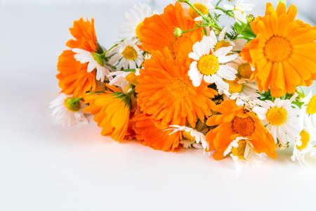 Bouquet of daisies, calendula on a white background.