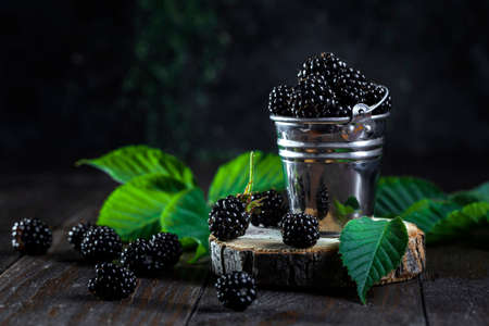 Image with blackberries. Banque d'images