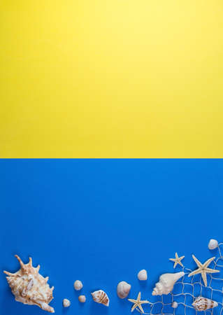 Creative composition of seashells on yellow and blue background. Summer minimal concept.