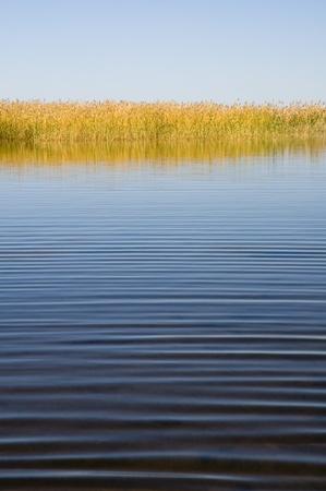 brushwood: quiet autumn lake Stock Photo
