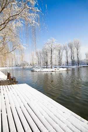 Winter scenic of a lake with snow covered trees. photo