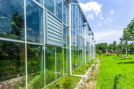 wintergarten: Wintergarten aus Glas