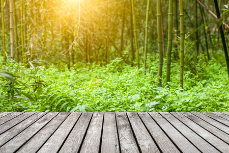 Sidewalk in the bamboo forest photo