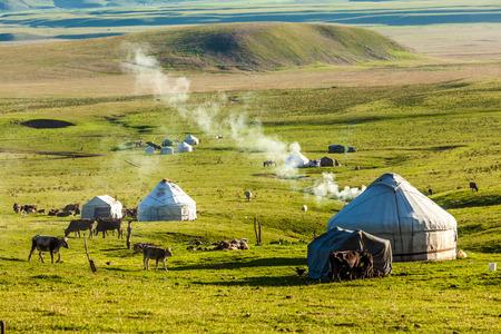 grassland in Xinjiang