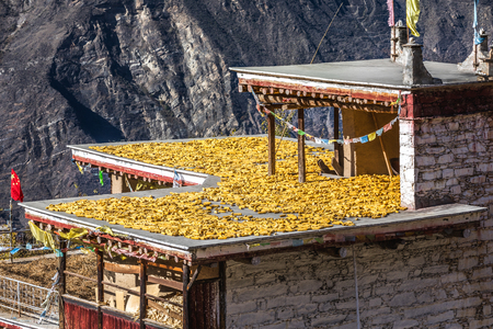 Tibetan village in Sichuan of China Reklamní fotografie - 123171258