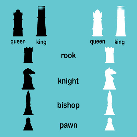 hierarchy: Hierarchy game chess. Queen and pawn, knigh and rook, vector graphic illustration