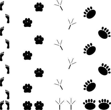 black boots: Foot print set. Step silhouette animal, track and trace, vector graphic illustration