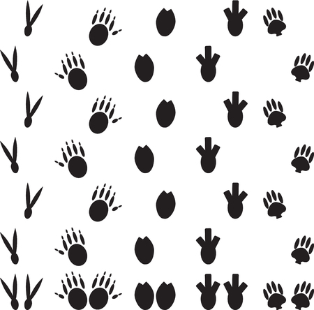 animal tracks: Animal foot print set. Trace paw, footprint cat or dog, mammal wild, bird track, dinosaur and monster or bear. Vector art abstract unusual fashion illustration