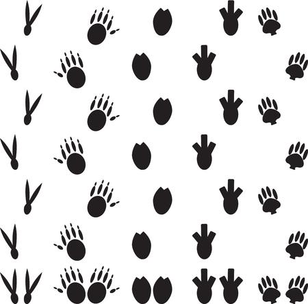 vogelspuren: Tier Fußdruck gesetzt. Trace Pfote, Fußabdruck Katze oder Hund, Säugetier wild, Vogel Spur, Dinosaurier und Monster oder Bären. Vector Kunst abstrakt ungewöhnliche Mode-Illustration
