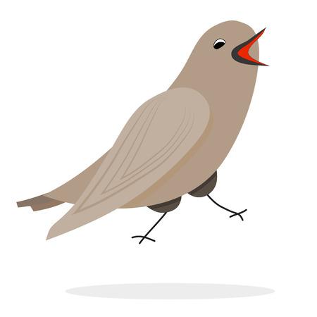 bird nightingale: Singing nightingale character. Vector bird, illustration animal Illustration