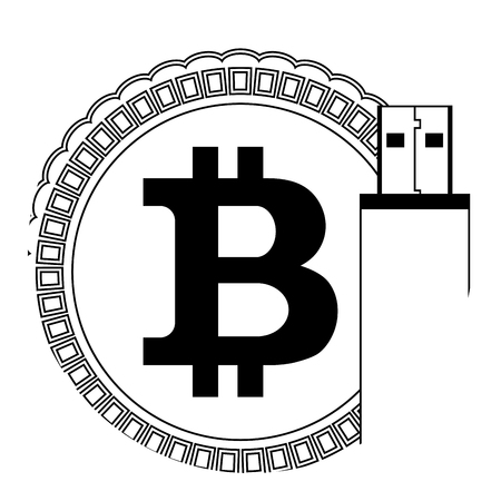 Storage Bitcoin Wallet Icon For Digital Protect Crypto Coin And Usb Flash Drive