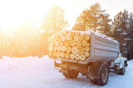 A truck with a full body of logs. Sale of lumber for firewood.