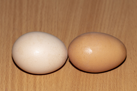 Two chicken eggs one after another on a brown table