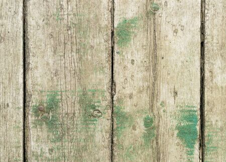 Old boards with the remnants of green rests. Textural background. Stok Fotoğraf