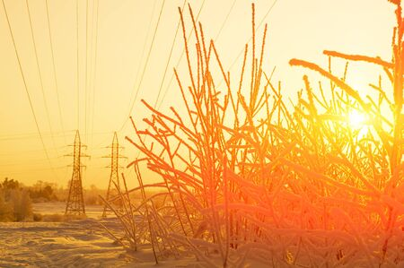 Sunset in Siberia. In the background are high-voltage supports. Orange.