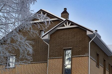 brick house and birch branches in winter.