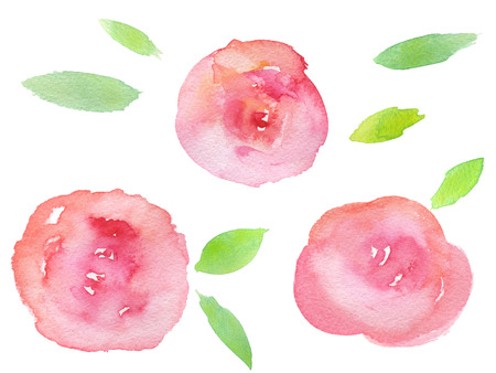 Hand drawn watercolor roses with green leaves
