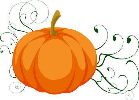 offsprings: Isolated pumpkin with green offsprings