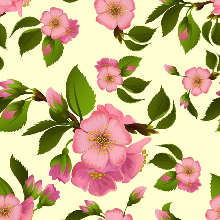 Seamless pattern with spring apple blossom Illustration