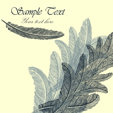 quill pen: Vintage background with hand-drawn feathers