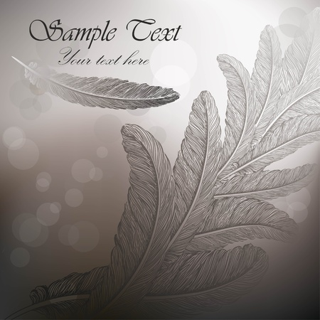 feather quill: Vintage background with feathers on steel gray