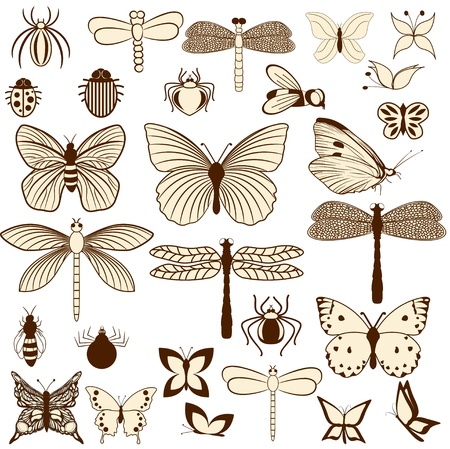 dragonfly wings: Set of stylized insects for decorating your work. Easy to edit and to change colors.