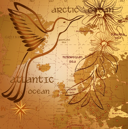Antique background with map and hummingbird silhouette Vector